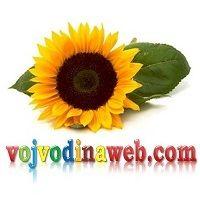 voj.web logó-1
