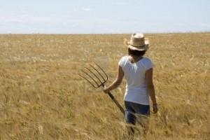 woman-overlooking-a-farm-field