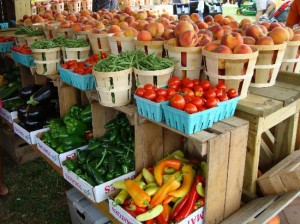agricultural fair