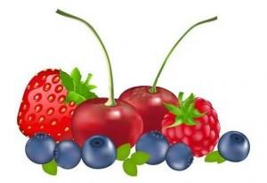 malina, jagoda, visnja, borovnica