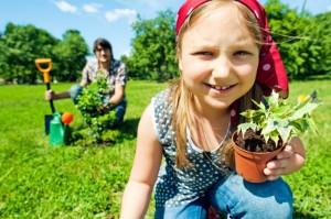 """Javni poziv za prijavu i učešće u realizaciji programa pod nazivom """"Za čistije i zelenije škole u Vojvodini"""""""