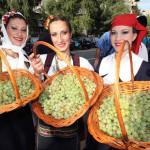 tradicionalna manifestacija