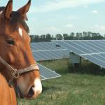 energetski odrzive farme