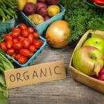organska-hrana1