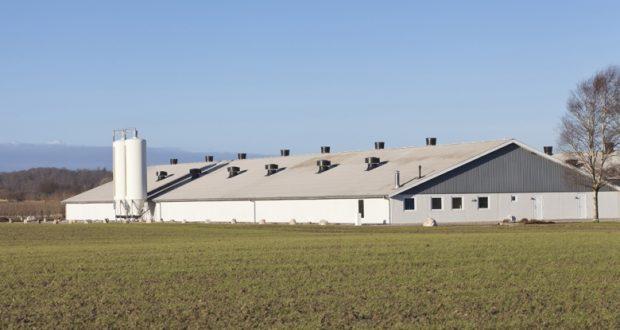 Bespovratna sredstva za izgradnju farmi